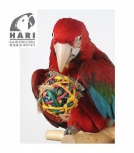 Juguetes Naturales para Pájaros Tesoros Rústicos HARI