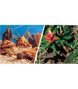 Fondo Decorativo Aqua Decor Bromelia/Desierto 30 cm x 15m