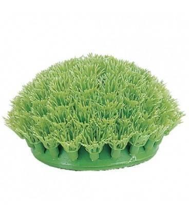 Plantas Plasticas Rootscaper MARINA