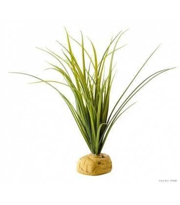 Plantas Con Base EXO TERRA