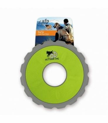 All For Paws Frisbee OutDoor Dog