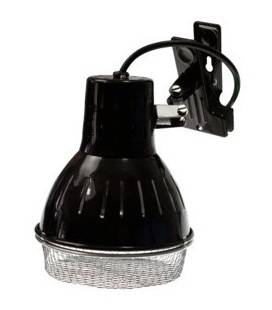 Campana Clamp Lamp para Bombillas HID SOLAR RAPTOR