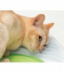 Pawise Kit Primeros Auxilio para Mascotas