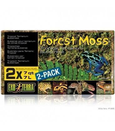Sustrato Natural Forest Moss EXO TERRA